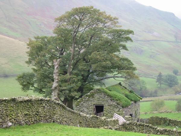 Ruined building, Hayeswater Gill