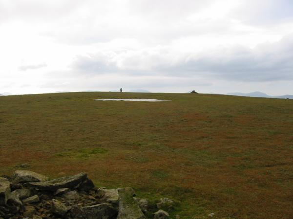 The flat summit of Stybarrow Dodd