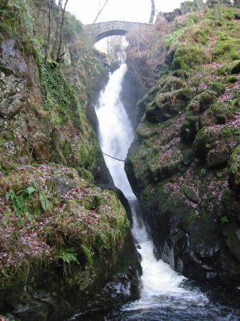Aira Force from the bottom