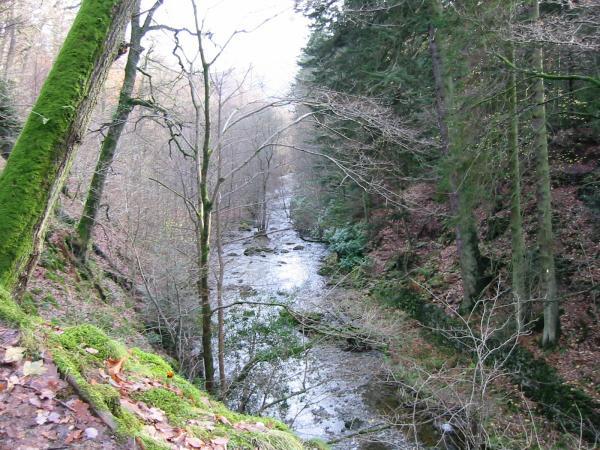Aira Beck below the falls