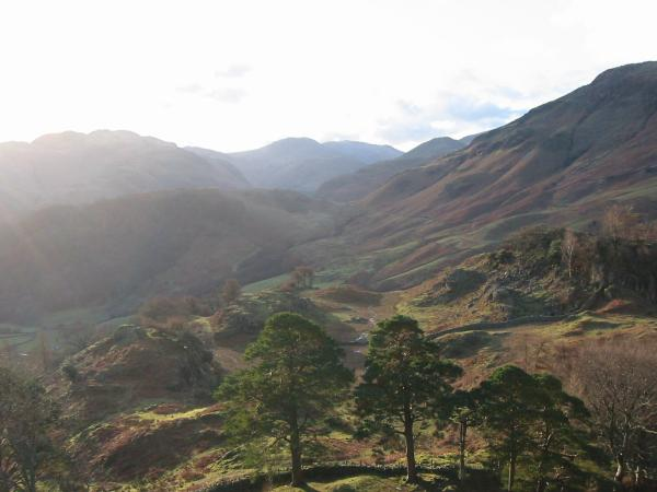 Upper Borrowdale from near the top of Castle Crag