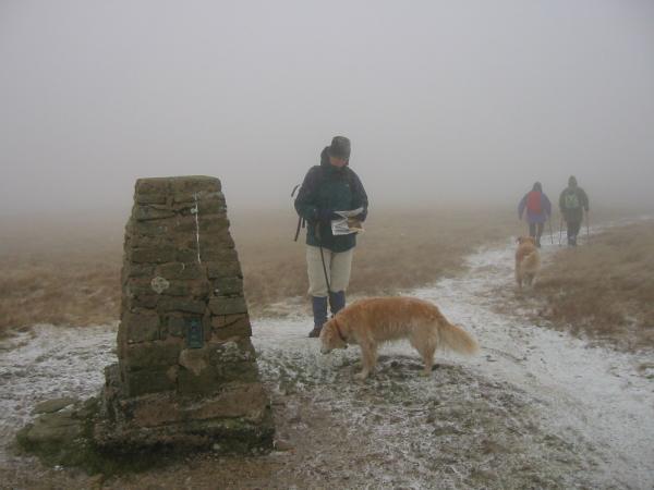 Trig point, Loadpot Hill summit