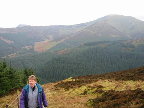 Grizedale Pike and the top of Causey Pike on the left, from the climb up Whinlatter