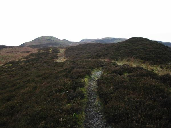 Looking west along the Whinlatter ridge