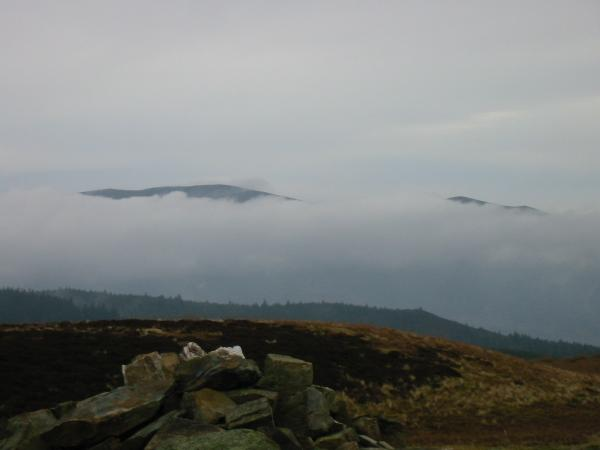 Skiddaw and Little Man just poking out of the cloud from Whinlatter top