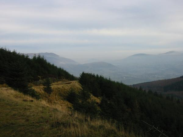 Latrigg from Whinlatter Forest