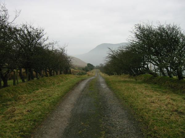 Loweswater to Mosser old road