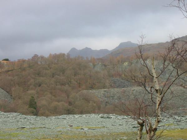 The Langdale Pikes from Hodge Close