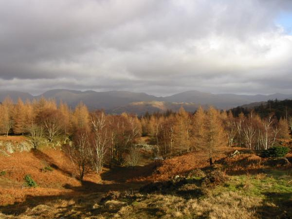 Looking towards Fairfield from the lower slopes of Holme Fell