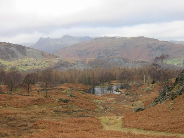 The Langdale Pikes with one of the disused quarry reservoirs in the foreground from Holme Fell