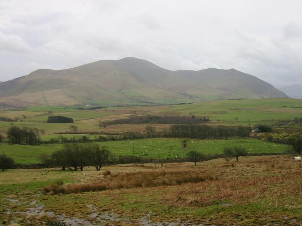 The Skiddaw Group: Bakestall, Skiddaw, Carl Side, Long Side and Ullock Pike from low down on the ascent of Binsey from Binsey Lodge