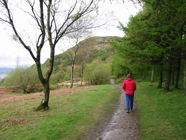 The path to Gummer's How