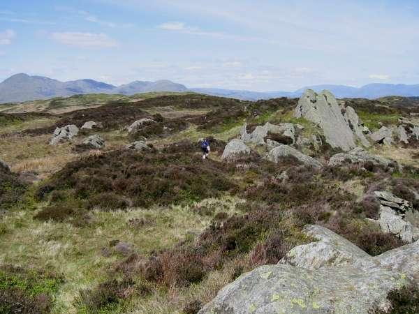 The Coniston Fells from Arnsbarrow Hill summit