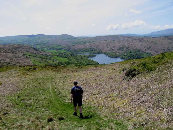 Descending towards Coniston Water from Top O' Selside