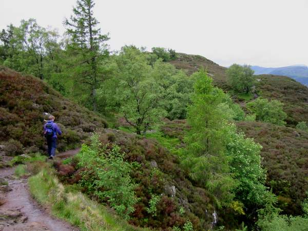 Heading towards Walla Crag summit