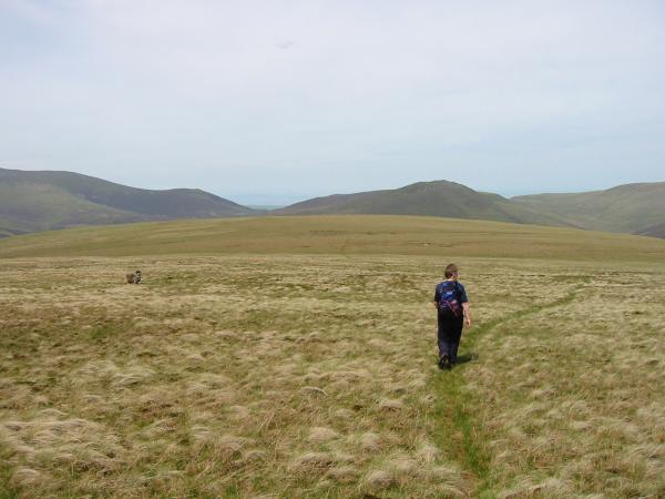 Heading across the flat top of Mungrisdale Common to its 'summit'