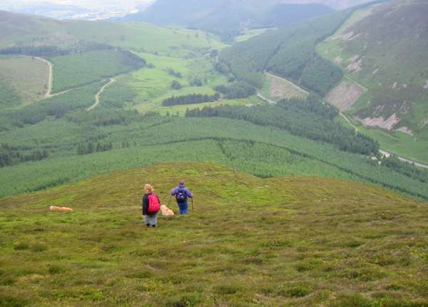 Descending to Whinlatter Pass from Hobcarton End