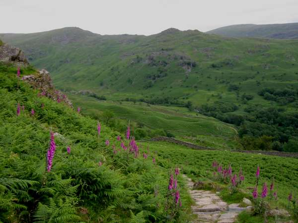 High Pike and Low Pike from the descent to Rydal from Nab Scar
