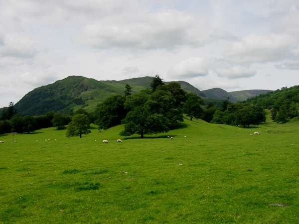 Nab Scar, the double top of Heron Pike, Great Rigg and the flat top of Fairfield from Rydal Park