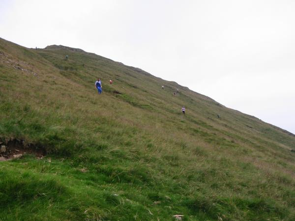 Orienteers descending to the finish