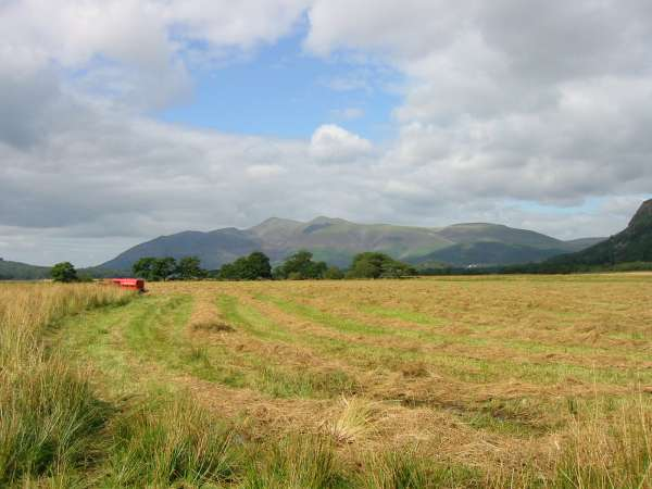 Looking north across Cannon Dub to Skiddaw