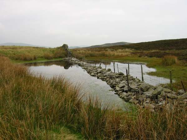 Wall through a pond as noted by Wainwright