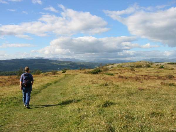 Heading northwards along the top of Whitbarrow