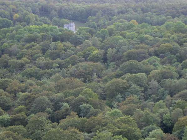 A tower of Witherslack Hall in a sea of trees