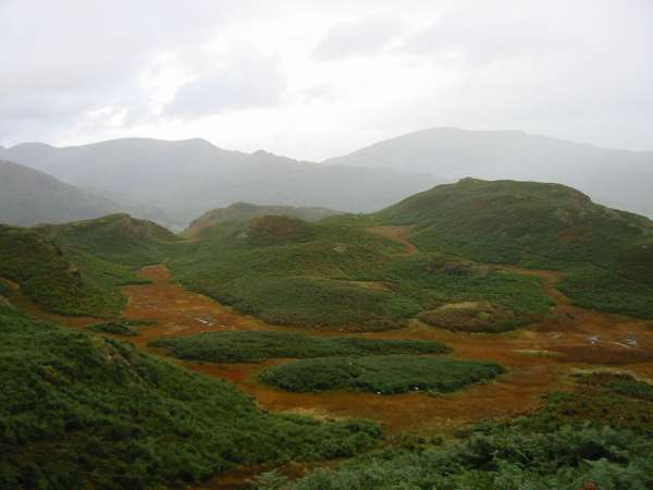 Marshland on Loughrigg Fell with the High Pike - Low Pike ridge and Red Screes in the distance