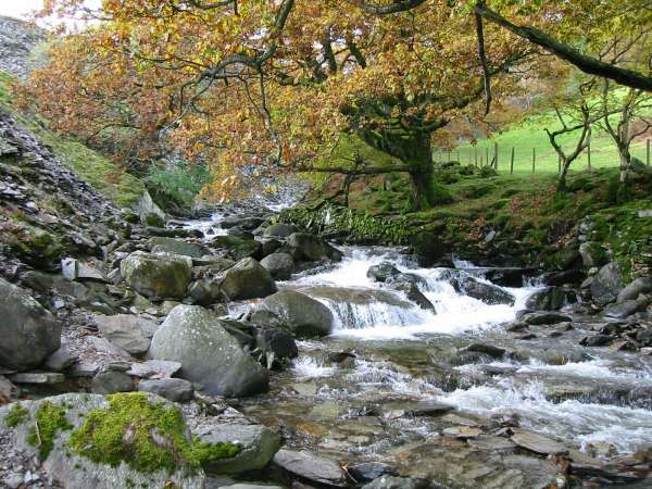 Yewdale Beck at Low Tilberthwaite