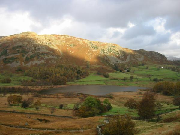 Little Langdale Tarn with Lingmoor Fell behind