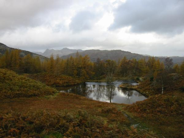 The Langdale Pikes and Lingmoor Fell seen from above the disused reservoirs on Holme Fell