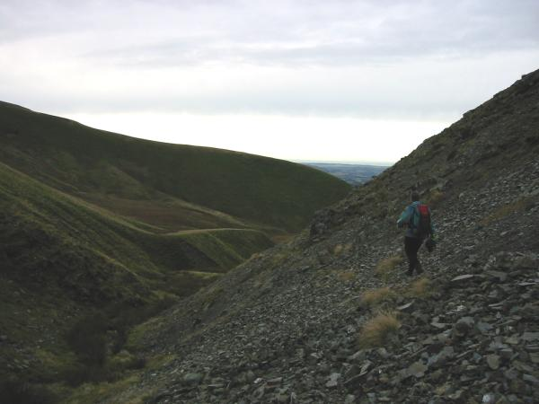 Descending by the gill