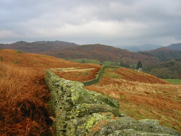 Looking towards Grasmere Common