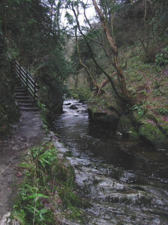 The River Twiss in Swilla Glen