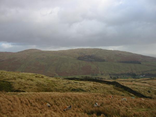 Sallows and Sour Howes from the top of Nanny lane
