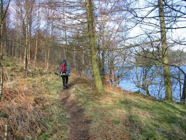 Thirlmere shoreline path