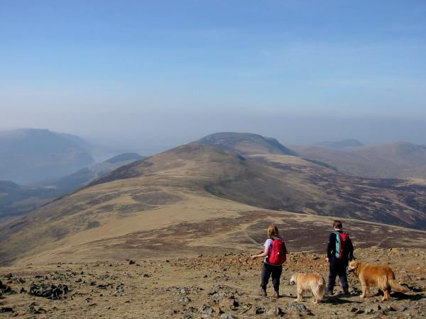 Starling Dodd and Great Borne from Red Pike