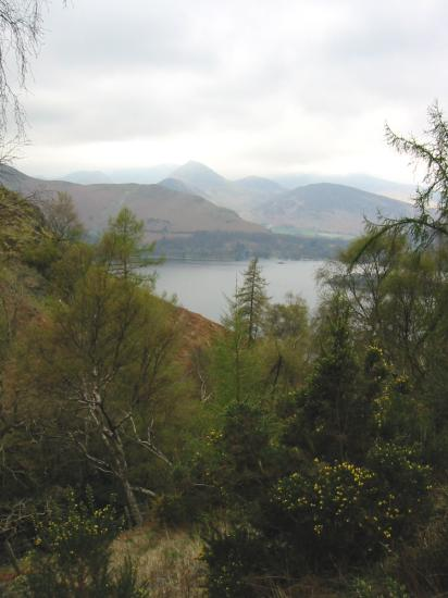 Looking across Derwent Water to Causey Pike from Cat Gill