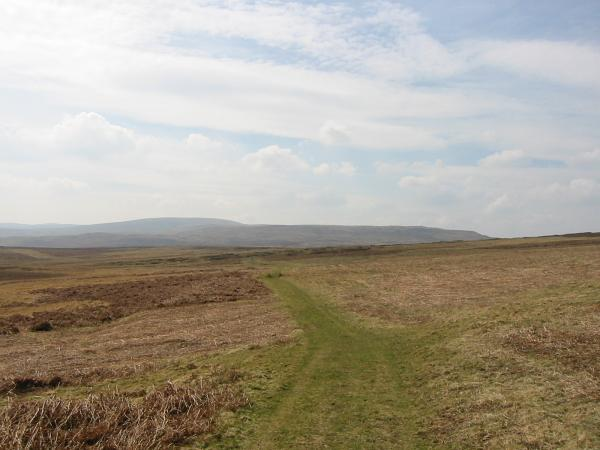 Looking southwest across Moor Divock to Loadpot Hill (high point on skyline)
