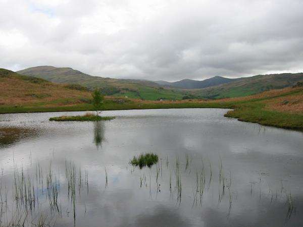 Red Screes and the Ill Bell ridge from Lily Tarn