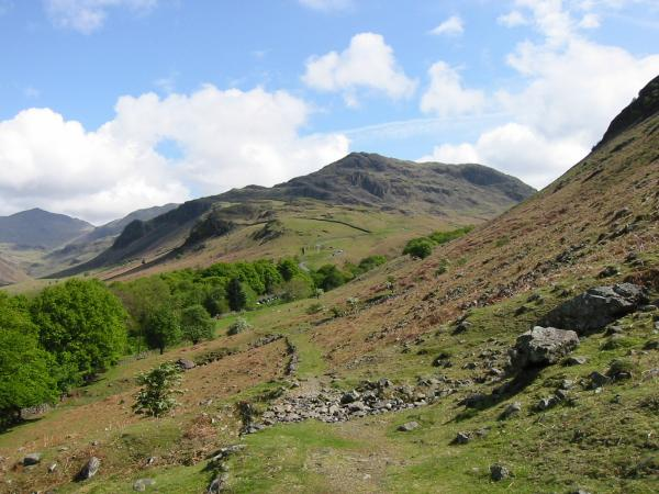 Hard Knott centre and Bowfell on the far left from the path