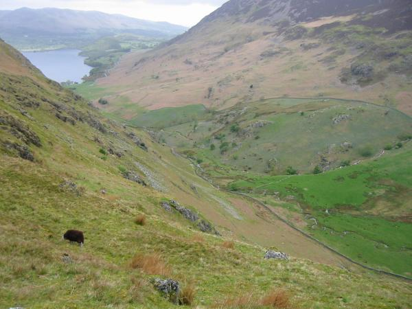Looking down into Rannerdale