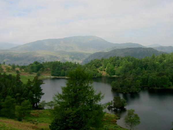Wetherlam from Tarn Hows
