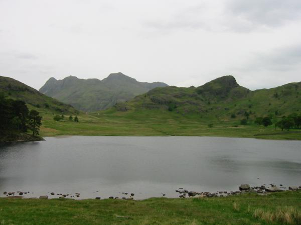 Langdale Pikes and Side Pike from Blea Tarn