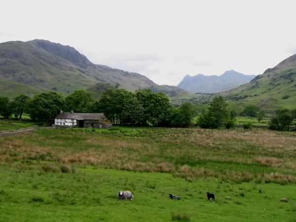 Bridge End with Blake Rigg behind on the left and the Langdale Pikes in the distance