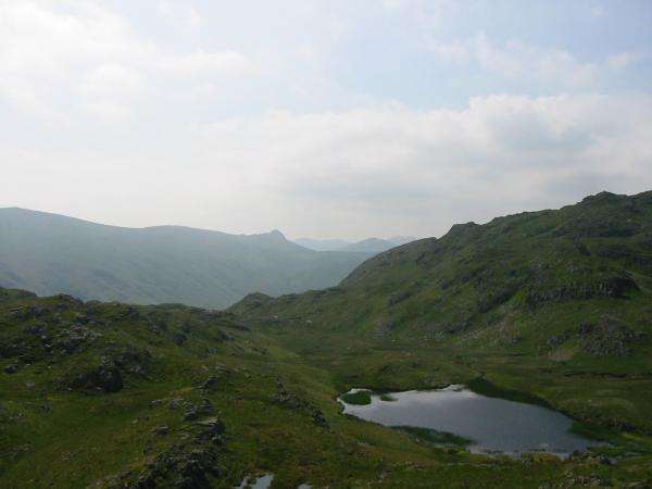 Looking over Tarn at Leaves to Pike O' Stickle