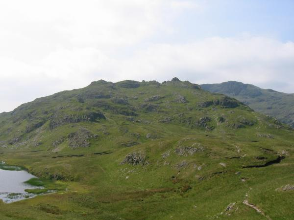 The southern and higher part of Rosthwaite Fell from Bessyboot. Rosthwaite Cam is the rocky tor just right of centre