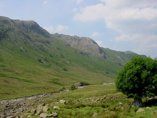 Cam Crag on the side of Rosthwaite Fell