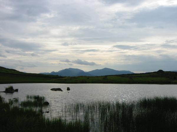 Eel Crag and Grisedale Pike from Tewet Tarn